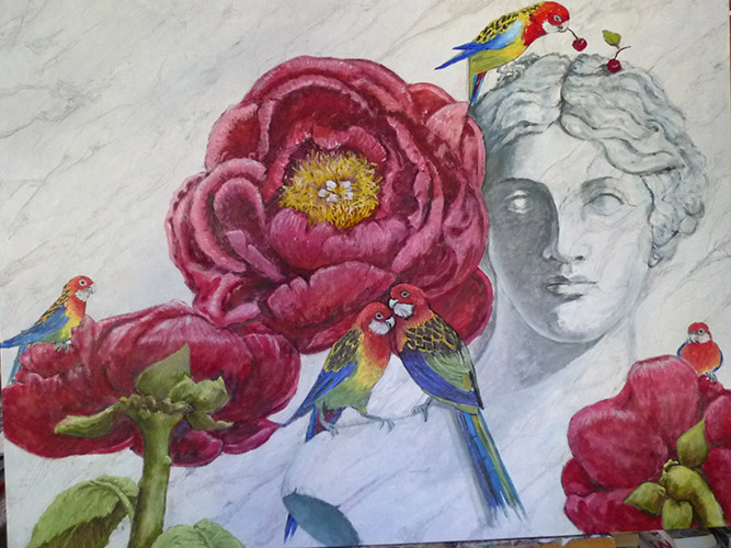 Peonies and Rosellas